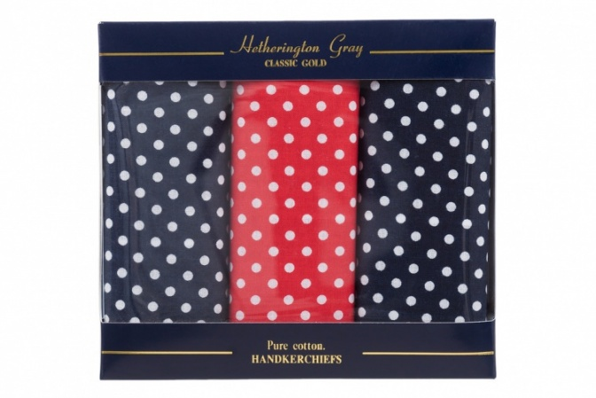 Navy Blue and Red Spotted Handkerchiefs